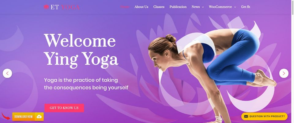 ET Yoga WordPress Theme